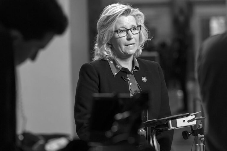 Why Liz Cheney Is My New Favorite Action Figure